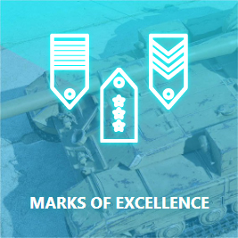 wot marks of excellence